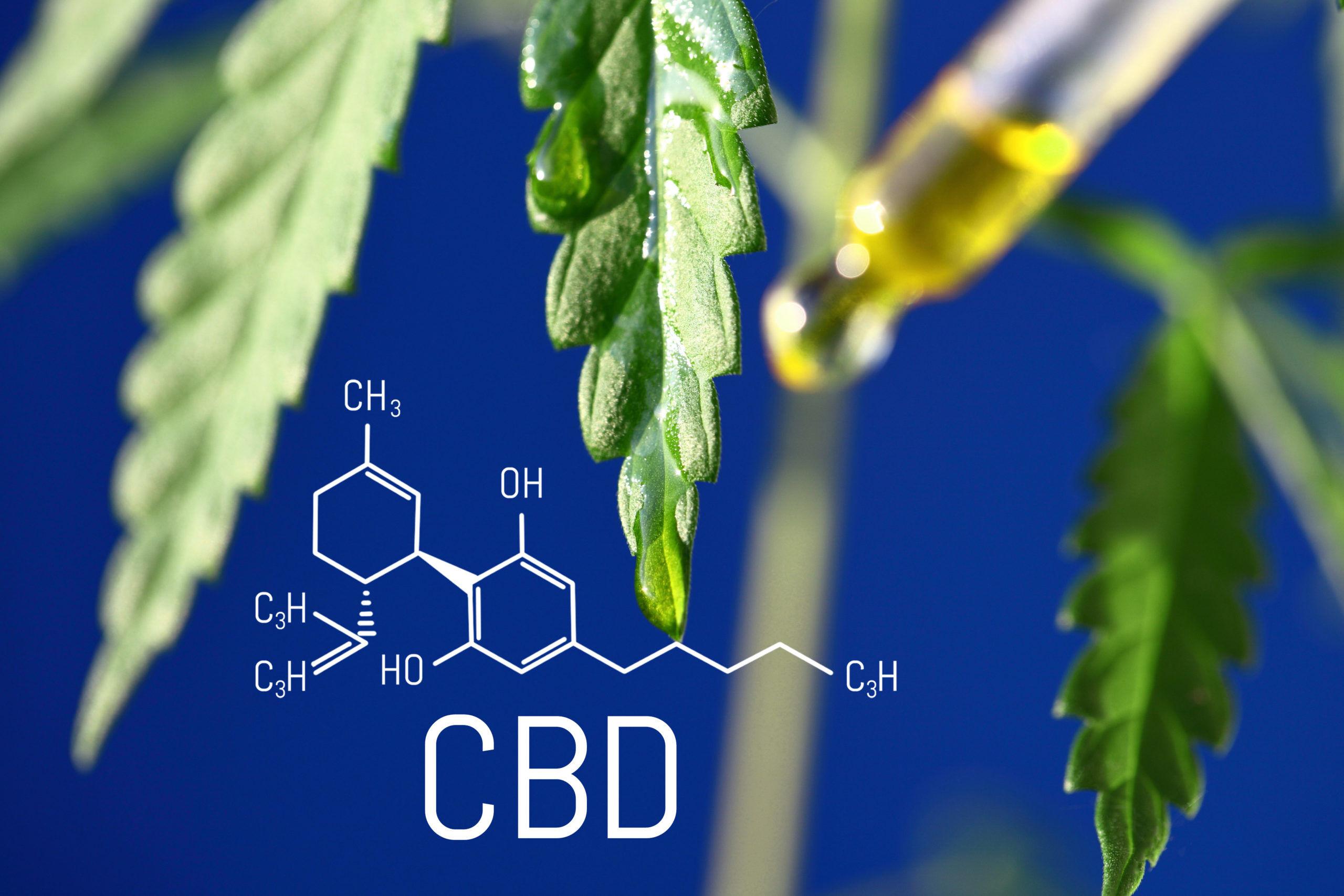 le cbd dosage