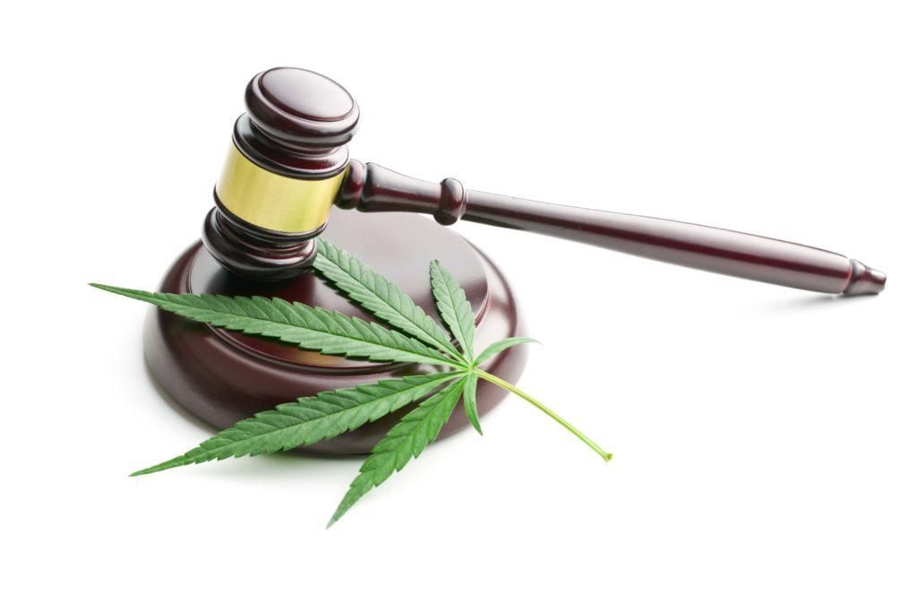 Fleurs de chanvre - législation en france